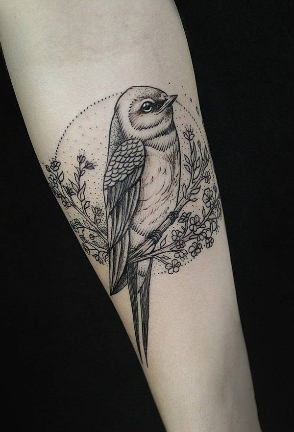 17 Best Ideas About Robin Bird Tattoos On Pinterest Ideas And Designs