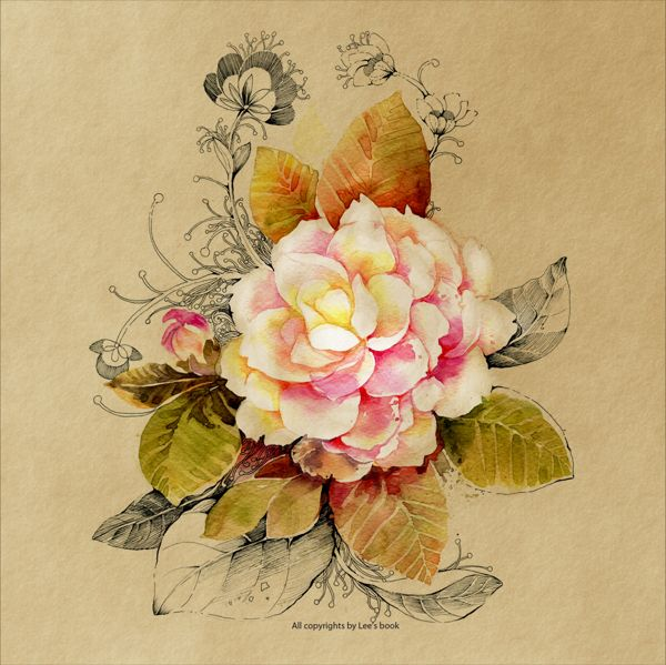 Camellia By Trong Lee Flower Illustration Illustration Ideas And Designs