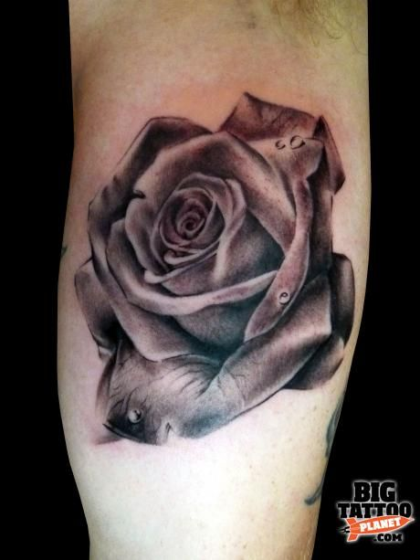 Red And Gray Rose Tattoo Big Rose Tattoo Tattoos Ideas And Designs