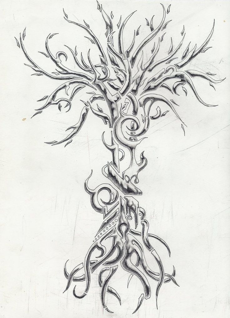 1000 Ideas About Tree Tattoo Designs On Pinterest Palm Ideas And Designs