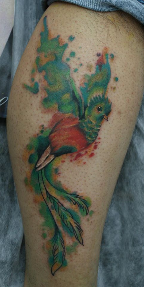 25 Best Ideas About Quetzal Tattoo On Pinterest Ideas And Designs