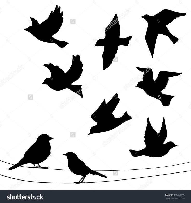 17 Best Ideas About Bird Silhouette Tattoos On Pinterest Ideas And Designs