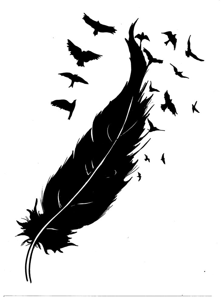 """""""Feather Into Birds"""" Sketch For Tattoo Design Tattoomagz Ideas And Designs"""