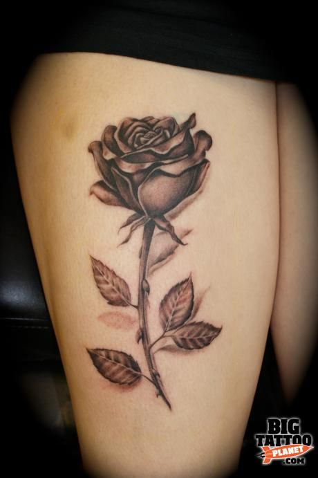126 Best Images About Roses Tattoo On Pinterest Thigh Ideas And Designs