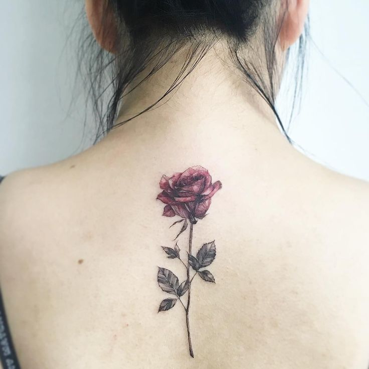 25 Best Ideas About Rose Tattoos On Pinterest Rose Ideas And Designs