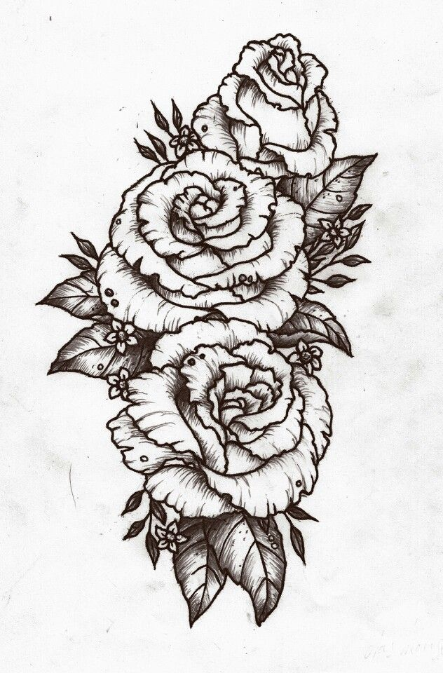 Rose Design Tattoo Pinterest Design Roses And Posts Ideas And Designs