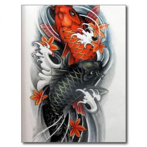 Tattoo Designs For Koi Fish Turning Into Dragon Half Ideas And Designs