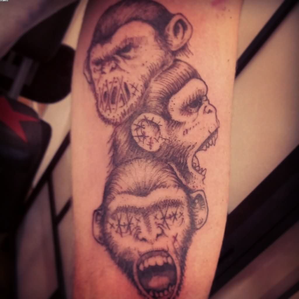 28 3 Wise Monkeys Tattoo Designs Pin Wise Monkeys Ideas And Designs