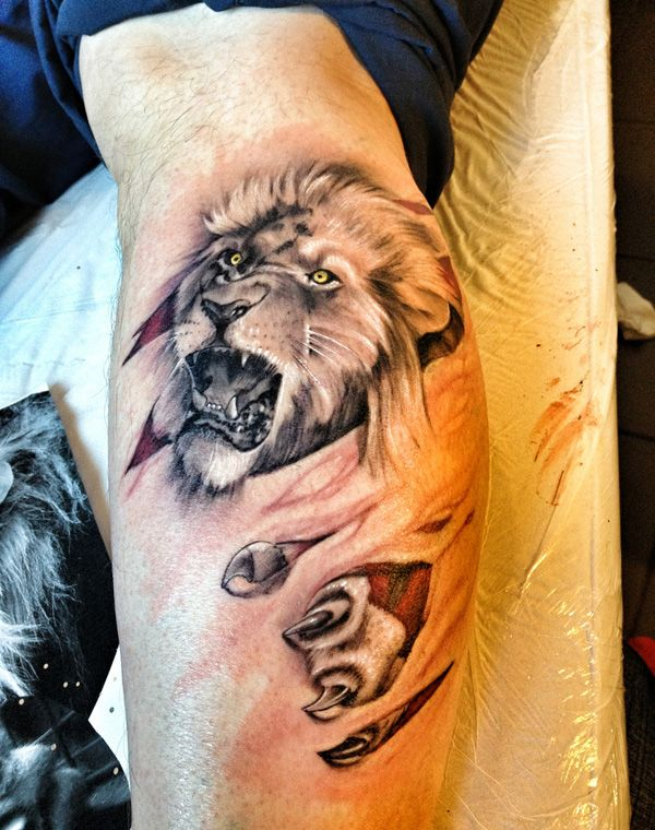 50 Examples Of Lion Tattoo Tatoo Chang E 3 And Lion Tattoo Ideas And Designs