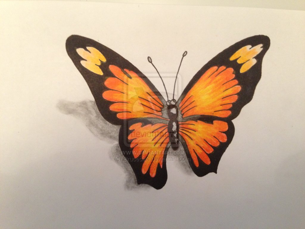 4 Incredible 3D Butterfly Tattoo Designs Ideas And Designs