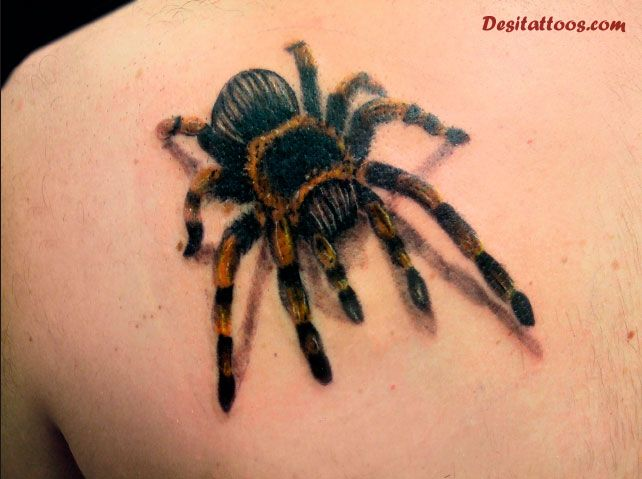 30 Wonderful Insect Tattoos Ideas And Designs