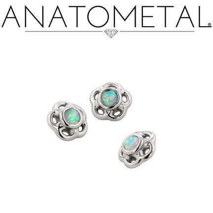 anatometal piercing