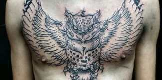 owl tattoos on chest tattoosme