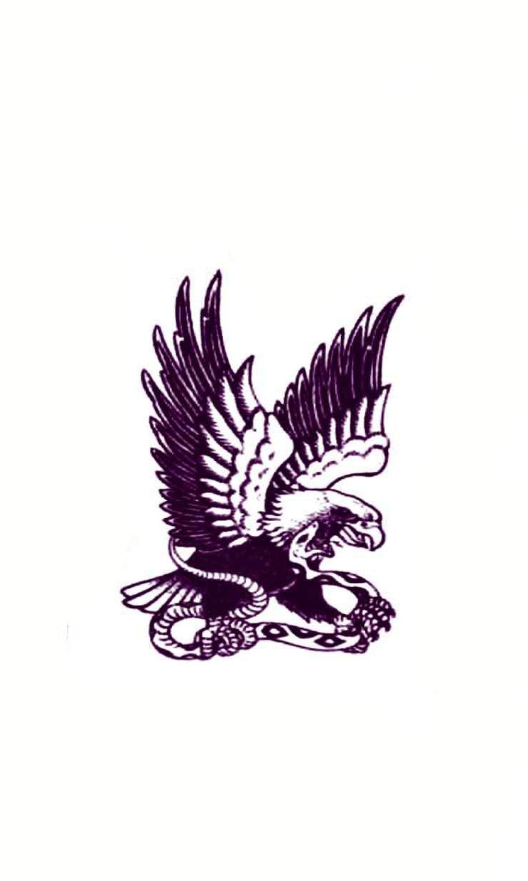Small Eagle Tattoo Designs : small, eagle, tattoo, designs, Small, Eagle, Tattoo, Design