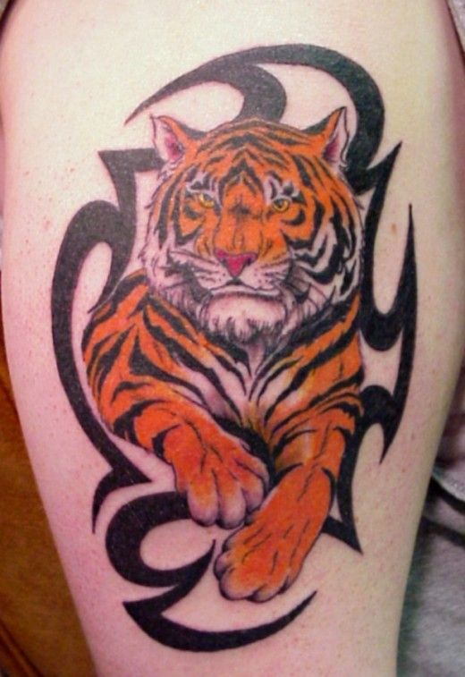 Tiger Tribal Tattoo Designs