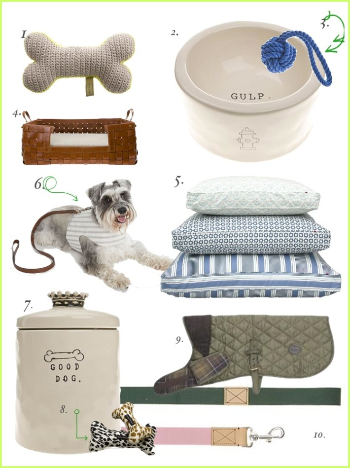 For the Love of Dog: A selection of Chic Canine