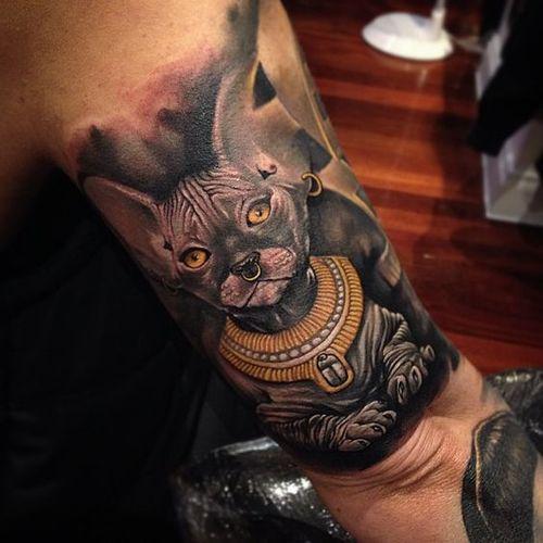 Gato Sphynx Diseños De Tatuajes 2018 Tatuajeclubcom