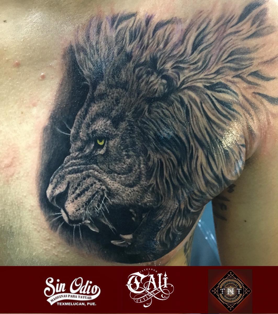 Tatuaje Del Artista Mexicano Cali Cetina Leon En El Pecho