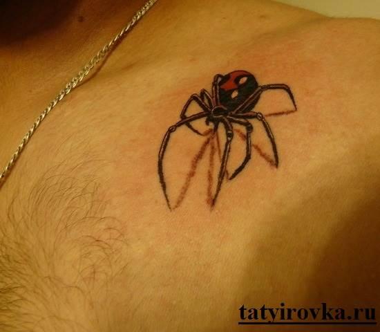 Тату-паук-и-их-значение-3