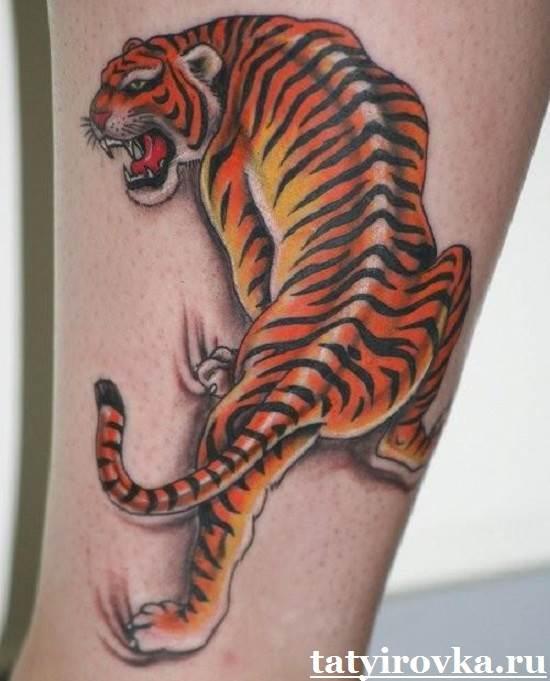 Тату-тигр-и-их-значение-9