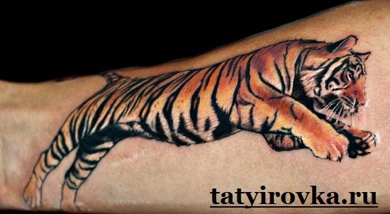 Тату-тигр-и-их-значение-6