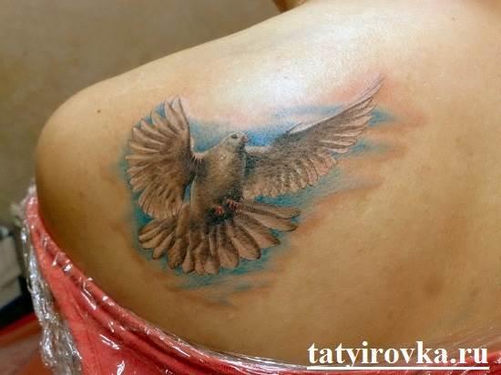 Тату-голубь-и-их-значение-12