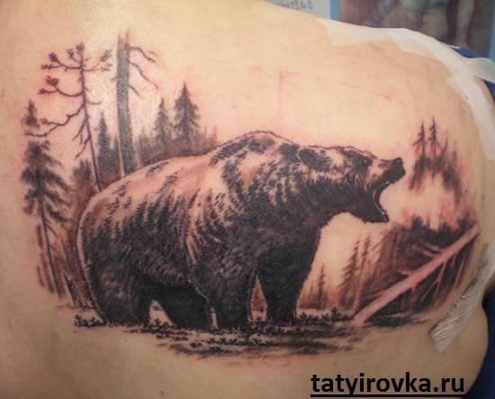 Тату-медведь-и-их-значение-10