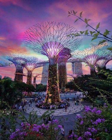 Gardens by the Bay, Singapore Central Singapore - Electrified, Night