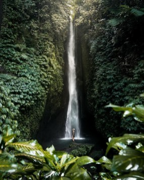 Leke Leke Waterfall, Tabanan Bali Indonesia - Body of water, Forest, Natural environment, Natural landscape, Nature, Nature reserve, Outdoor structure, Stream, Vegetation, Water resources, Watercourse, Waterfall