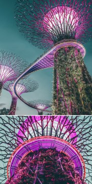 Gardens by the Bay, Singapore Central Singapore - Electrified, Lighting, Violet
