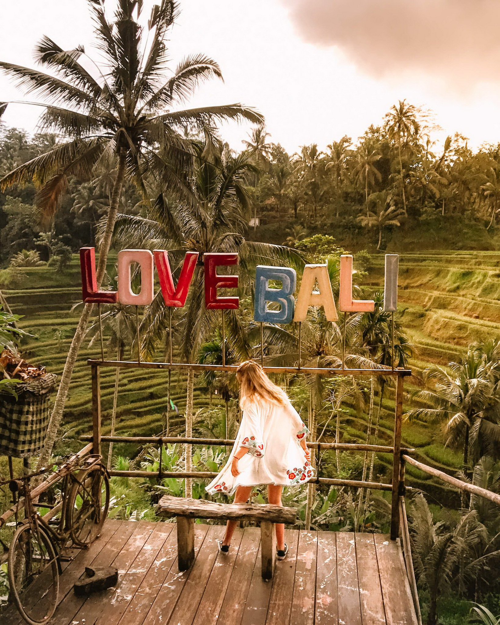 Tegalalang Rice Terrace, Ubud Bali Indonesia - Arecales, Bench, Bicycle, Outdoor bench, Outdoor furniture, Outdoor structure, Palm tree, Plantation