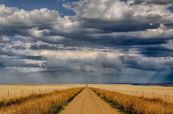 Montana Dirt Road Landscapes