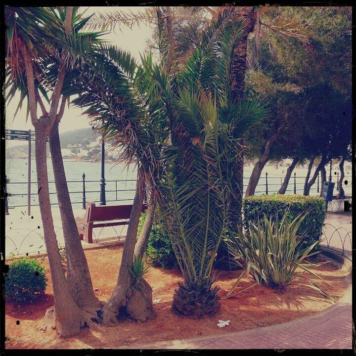 passeig de la platja @ Santa Eulalia