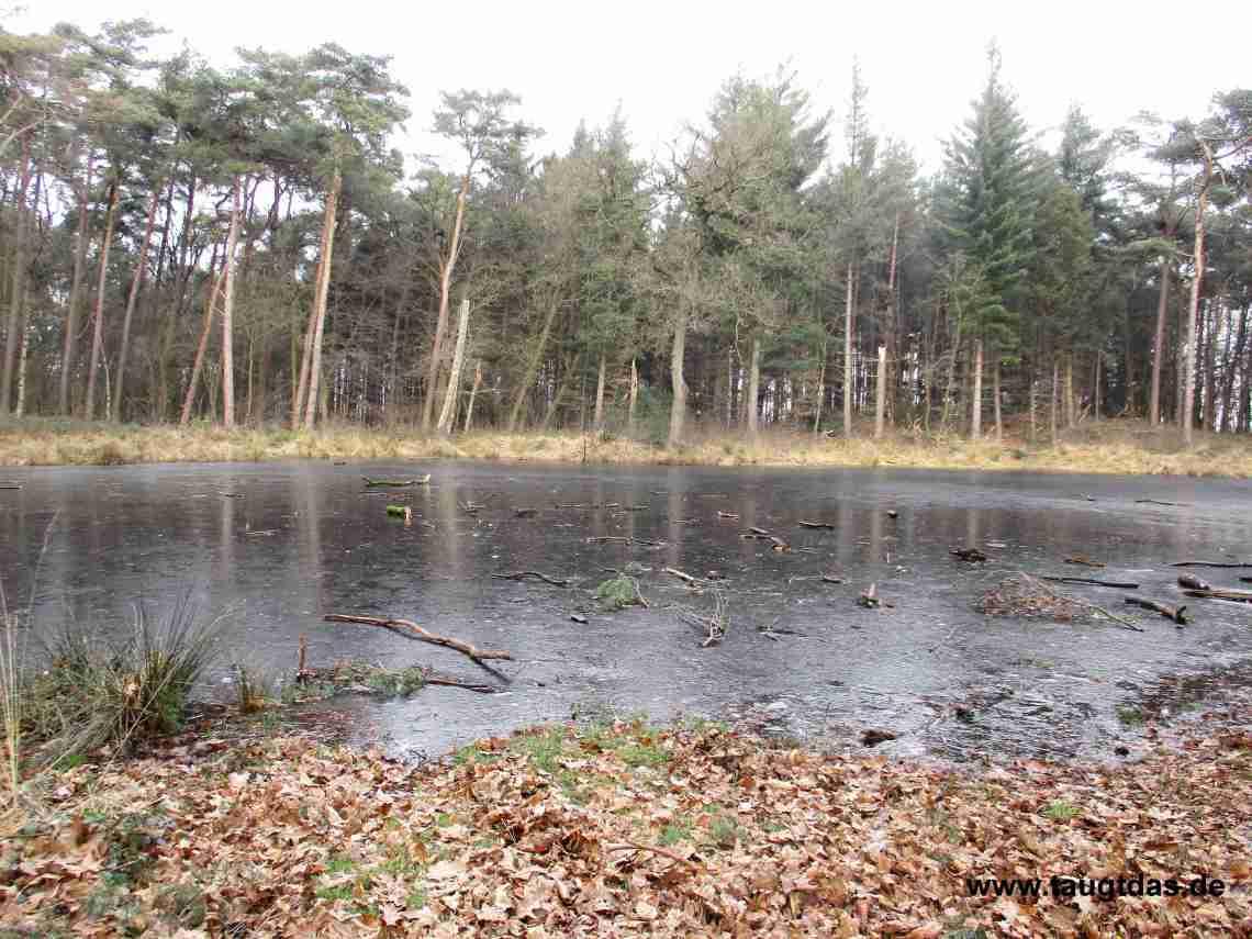 Heideweiher
