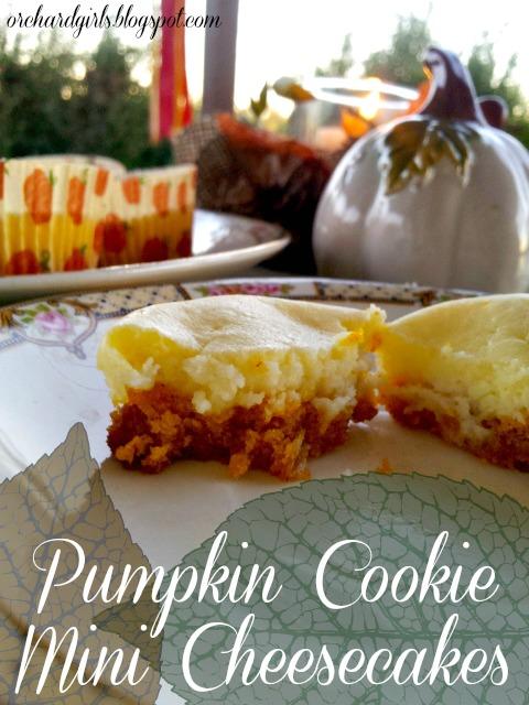 Mini Pumpkin Cheesecake via Orchard Girls