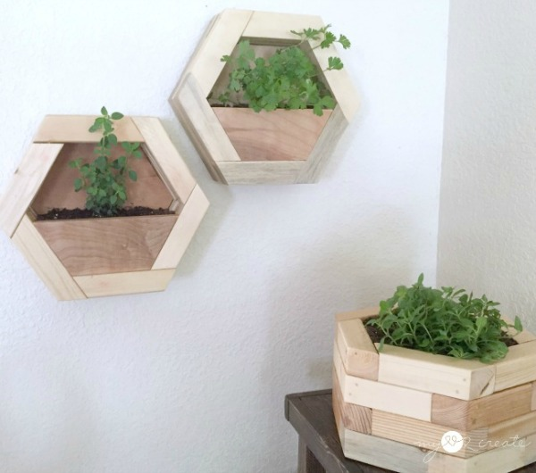 front shots of hexagon planters, MyLove2Create