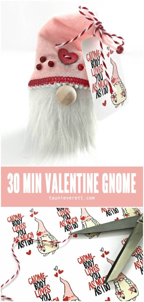 30 minute valentines day gnome ©tauni everett hero