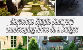 24 Marvelous Simple Backyard Landscaping Ideas On A Budget Plants for Simple Backyard Landscape Ideas