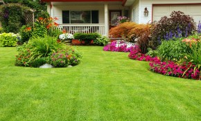 50 Best Backyard Landscaping Ideas And Designs In 2019 pertaining to Pictures Of Backyard Landscaping Ideas