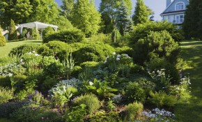 65 Best Front Yard And Backyard Landscaping Ideas Landscaping Designs inside 13 Some of the Coolest Tricks of How to Improve Backyard Tree Landscaping Ideas