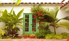 Amazing Tropical Plants For Small Garden Ideas Small Tropical throughout 10 Awesome Ideas How to Craft Small Tropical Backyard Ideas