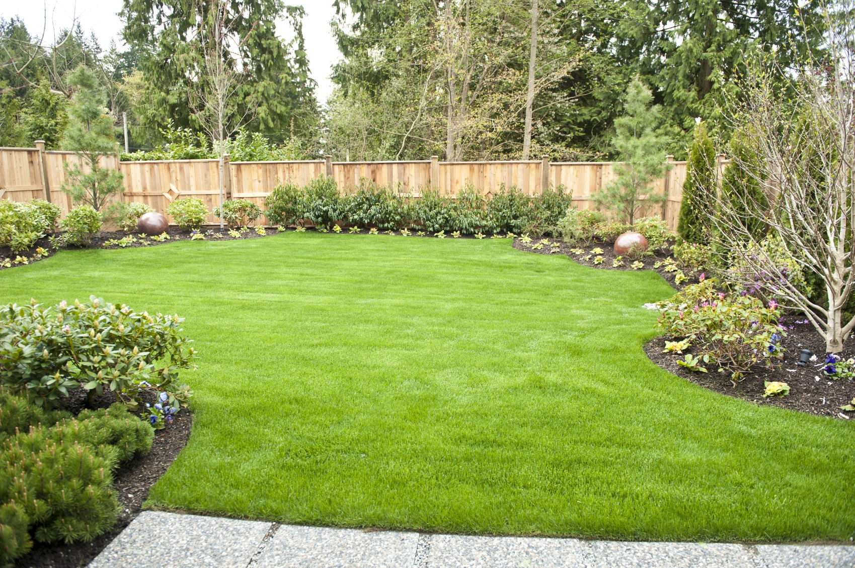 Backyard Backyard Landscape Garden How Do I Landscape My Backyard throughout Backyard Landscape Pics