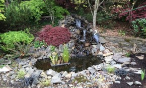 Backyard Pond And Waterfall No Experience Necessary 9 Steps With regarding 14 Awesome Ideas How to Build Backyard Pond Landscaping