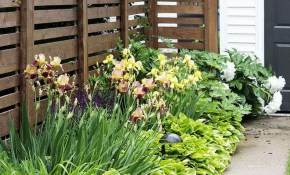 Backyard Privacy Fence Landscaping Ideas On A Budget Decor Its throughout 15 Smart Concepts of How to Build Ideas For Backyard Privacy