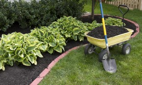 Buying Mulch In Bulk The Home Depot within 13 Genius Tricks of How to Improve Average Cost Of Backyard Landscaping