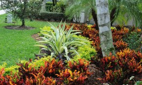 Curb Appeal In Boca Raton Landscape Design Tropical throughout Tropical Landscaping Ideas For Backyard