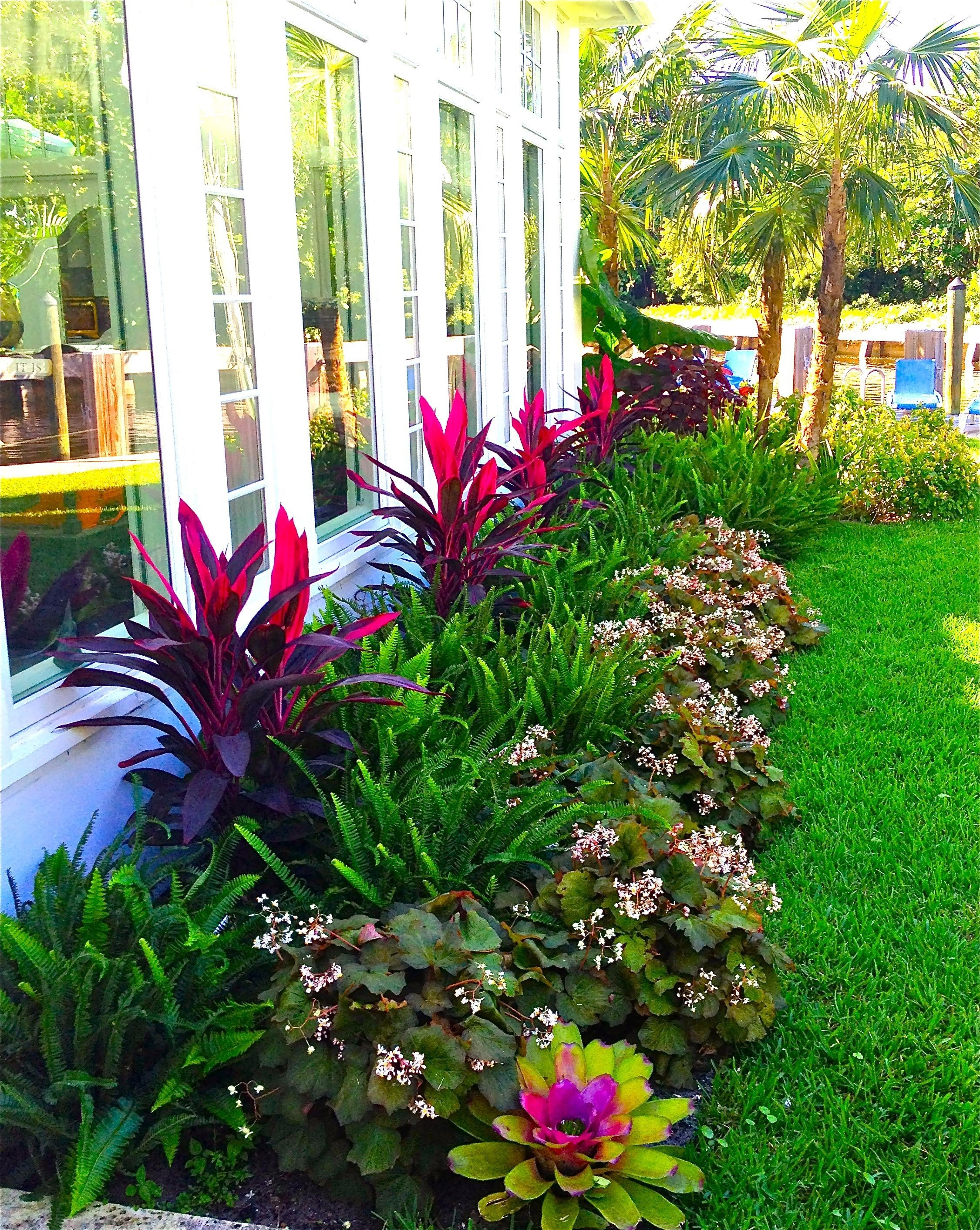 Florida Landscaping Ideas For Backyard Stunning Way To Add Tropical with regard to Florida Backyard Landscaping