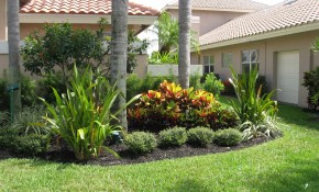 Front Idea Landscaping Ideas Florida Landscaping Front Yard inside 15 Some of the Coolest Ideas How to Upgrade Backyard Trees Landscaping Ideas