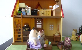 Houses My Own Private Sylvania in Sylvanian Families Cosy Living Room Set