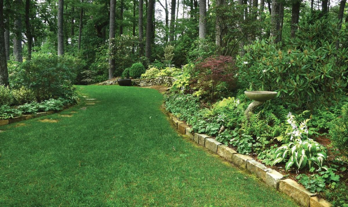 Image Result For Landscaping Ideas For Steep Wooded Slope Front Yard intended for 11 Awesome Ideas How to Makeover Wooded Backyard Ideas